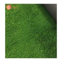 High Quality Artificial Grass Synthetic Football Artificial Grass